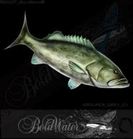 boldwater_stockfish_grouper_grey_01